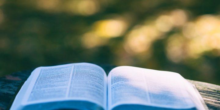 Livre blanc – Transformation : s'appuyer sur le transfert de connaissances